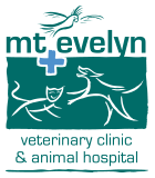 mt evelyn vet clinic